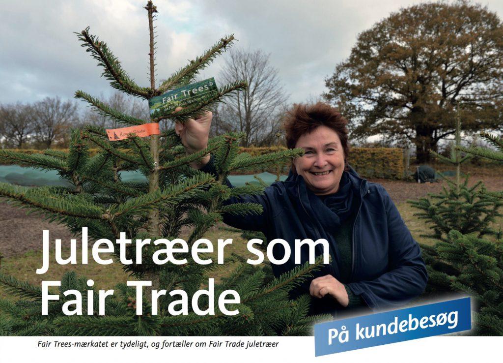 Fair Trees-mærkatet er tydeligt, og fortæller om Fair Trade juletræer.